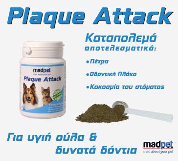plaque_attack