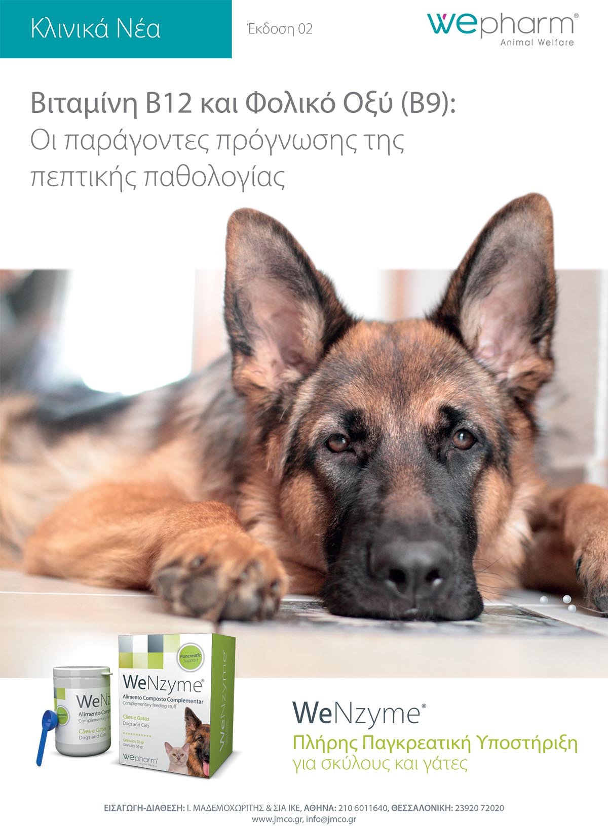 wenzyme-clinic-news